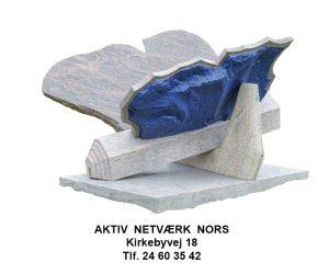 Aktiv Netværk program
